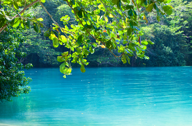 ジャマイカ、ブルーラグーン